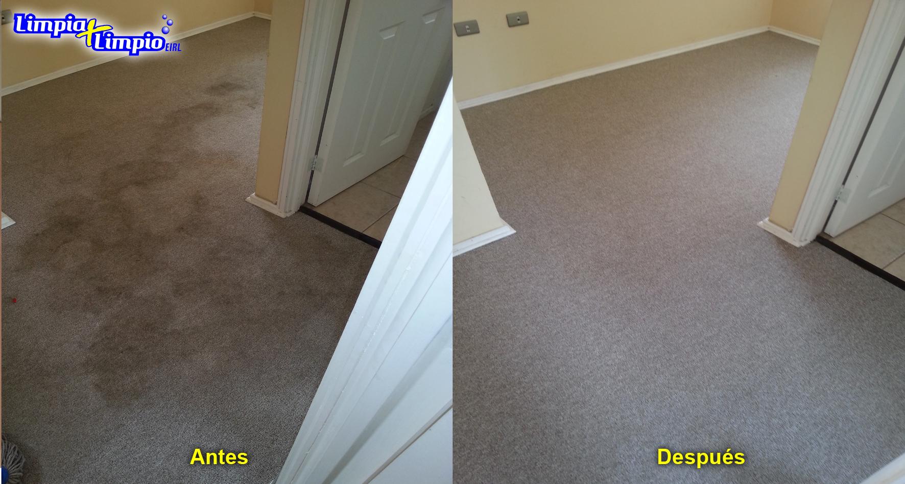 Como limpiar alfombras en seco excellent limpieza y - Como limpiar alfombras en seco ...